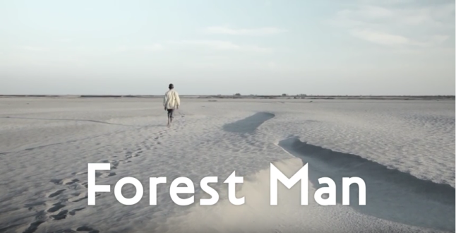 forest-man